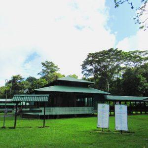 Estación Sirena